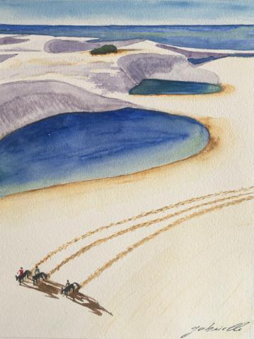 chevaux des dunes des Lençois